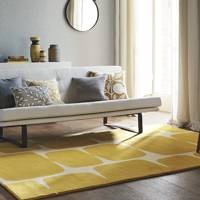 Rug Ideas Amp Designs Interior Decoration Ideas House