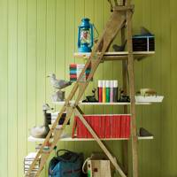 Bookshelf Ladder