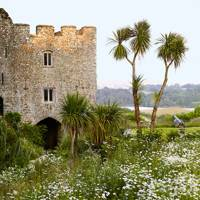Trematon Castle Wildflowers - Flower Garden Ideas and Designs | Outdoor Spaces