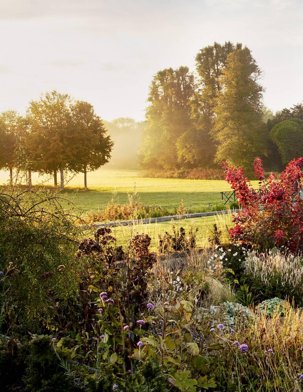 English Country Garden Ideas House Garden