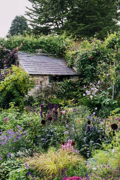 How To Plant A Cottage Garden House, How To Plan A Cottage Garden Uk