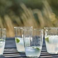 Glass Dimple Tumblers