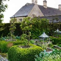 Hedged Garden - Bunny Guinness' Cambridgeshire Garden | Designers' Gardens