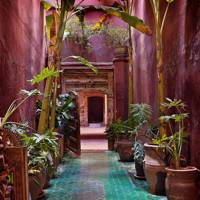 Moroccan garden with pink plaster walls and turquoise floors