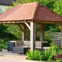 Aralia Gardens - East Anglia