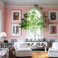 Pink Living Room with Indoor Tree