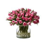 Double Tulips
