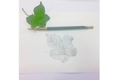 Botanical Art with Landmark Arts