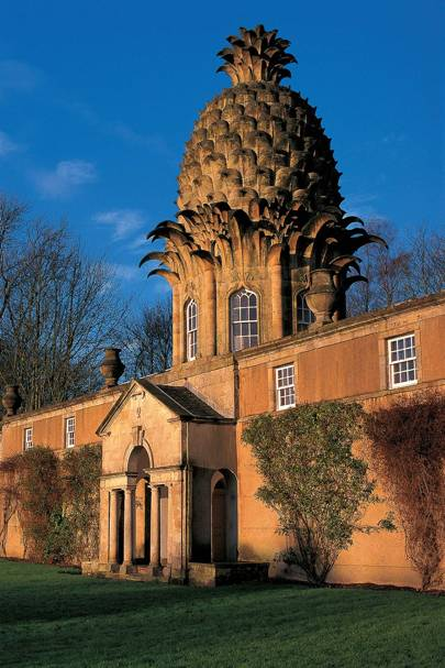 The PIneapple, Central Scotland