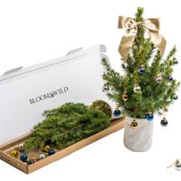 Bloom & Wild Christmas Tree