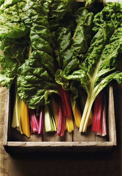 How to grow spinach and chard