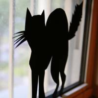 Black Cat Window Silhouette - DIY Halloween