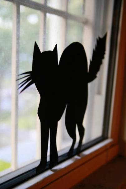 Black cat window silhouette