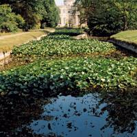 Waterlily canal at Frampton Court | English Gardens Design & Ideas