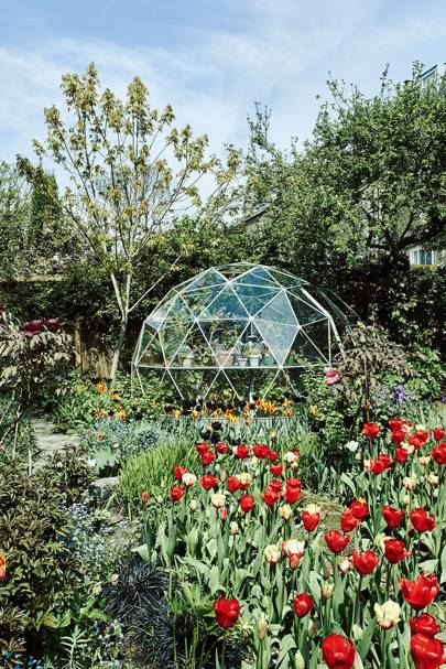 London Tulip Garden with Greenhouse - Charles Rutherfoord London House