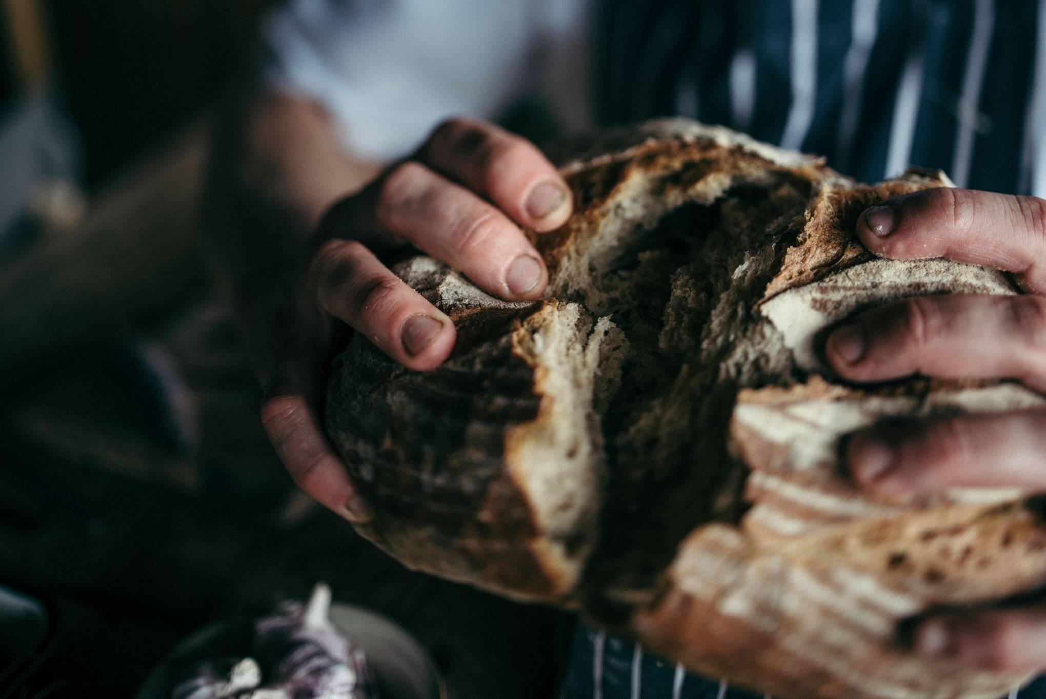 Cookery courses: breadmaking and oven building at River Cottage