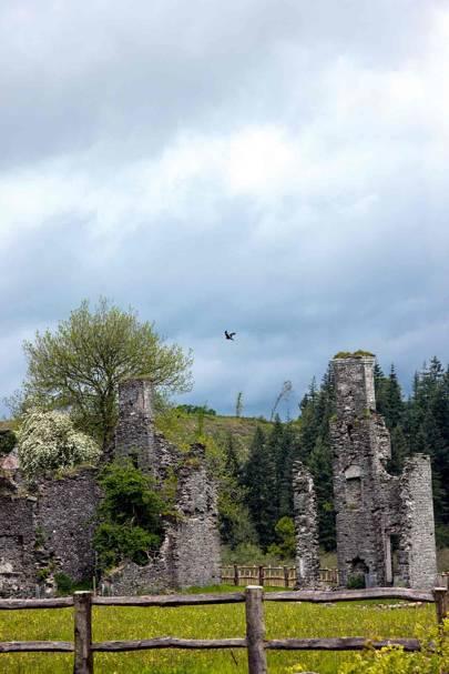 Ruins - Prince Charles' Welsh Home
