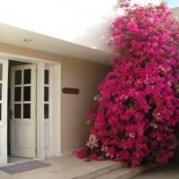 Villa 47, Dubai