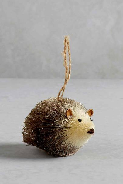 Matalan - Hedgehog