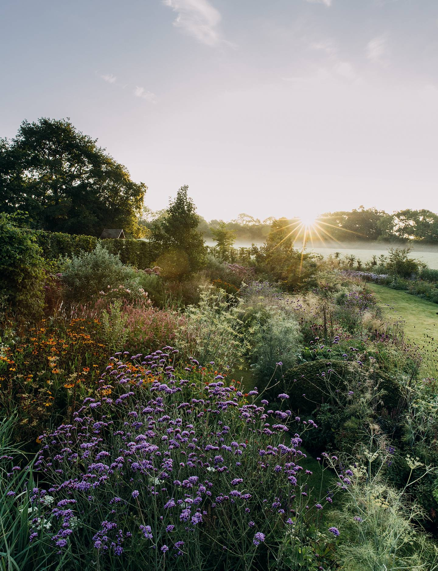 Landscape designer Alasdair Cameron's beautiful, practical Devon garden