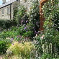 Charlotte Rowe Garden Design
