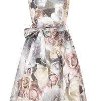Rose Printed Dress
