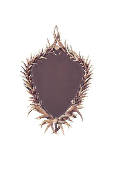 Antler Shield mirror