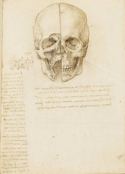Leonardo da Vinci: A Life in Drawing' February 1 to May 6