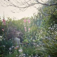 Englishman's garden