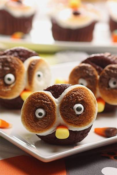 Marshmallow Owl Eyes