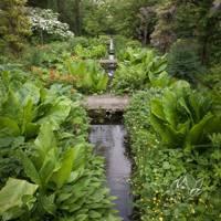 Garden Rill