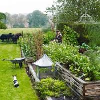 Kitchen Garden - Bunny Guinness' Cambridgeshire Garden