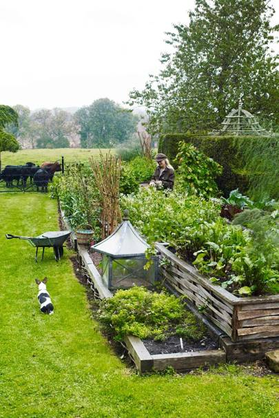 Kitchen Garden - Bunny Guinness' Cambridgeshire Garden