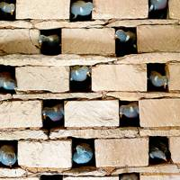 Dovecote Detail - Emma Burns' Converted Stable Block