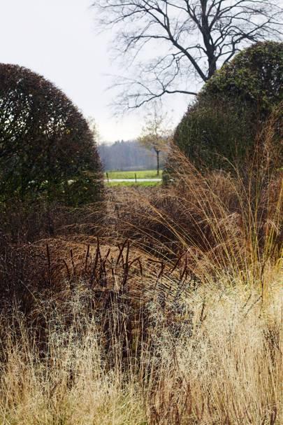 Grass and Hedges - Piet Oudolf's Dutch Garden