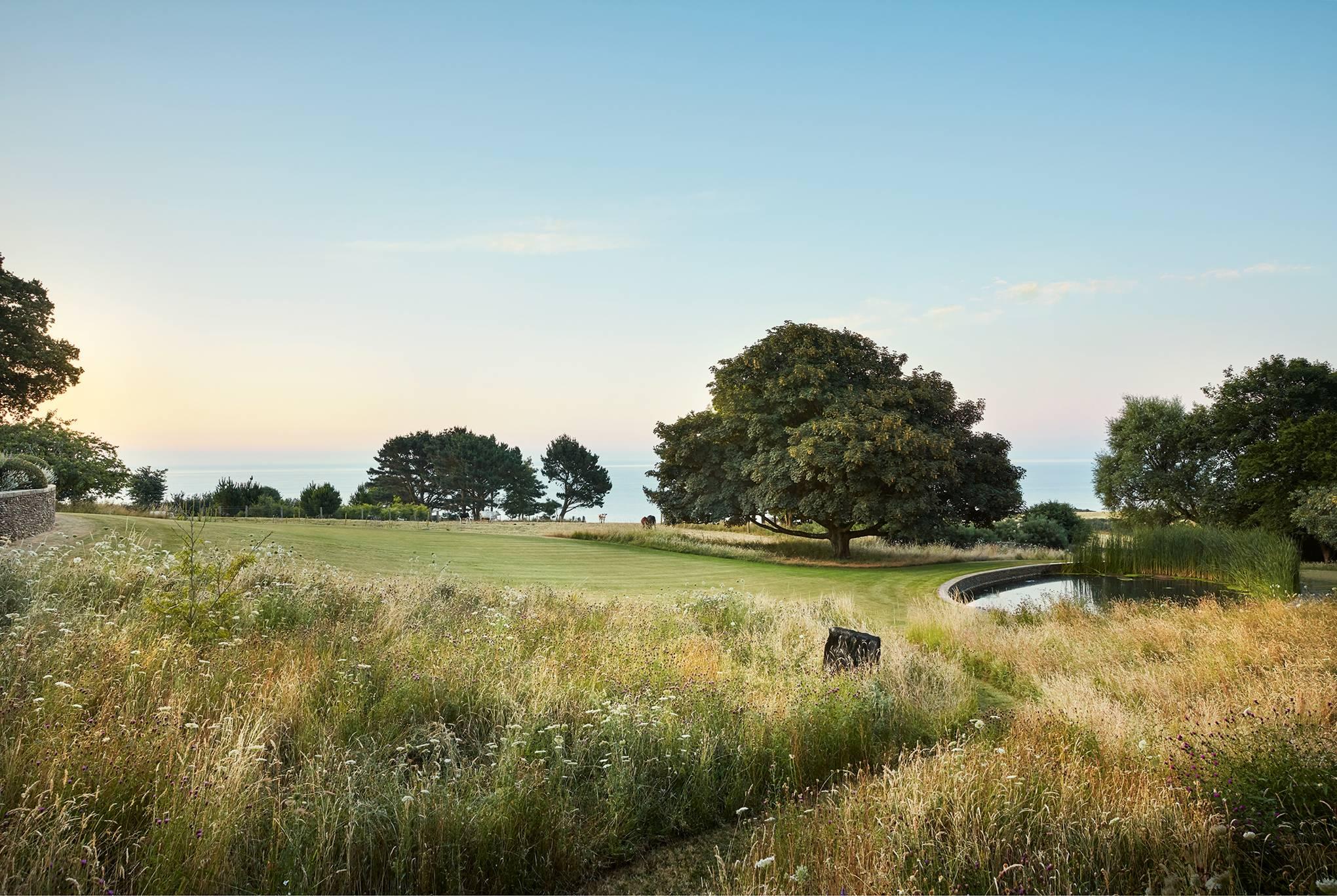 A naturalistic, environmentally sensitive Devon garden by Dan Pearson