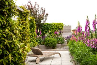 Decked roof terrace flower garden