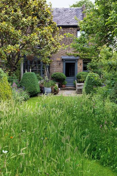 Wildflower Meadow | City Garden Ideas