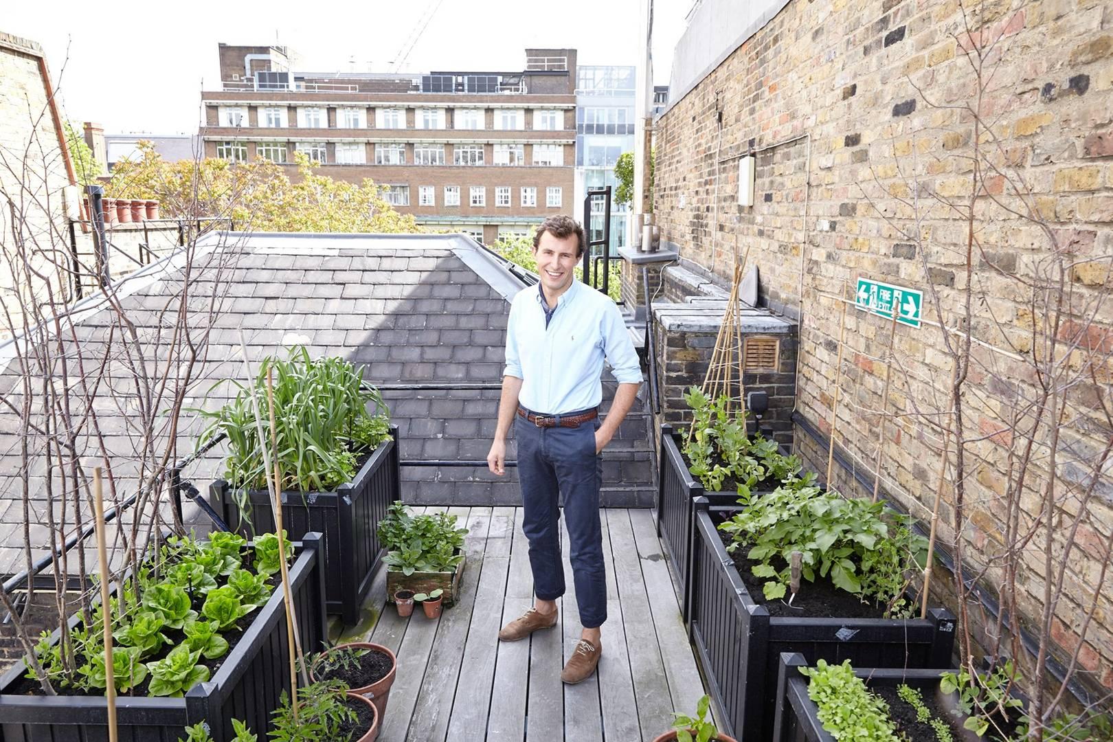 Balcony garden ideas  House & Garden