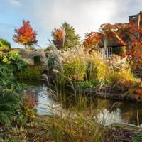 Inside November House & Garden
