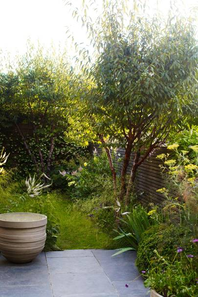 Water Barrel - Urban Family Garden | Designers' Gardens